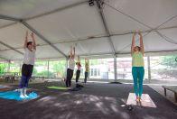 Yoga in Yellow Spa